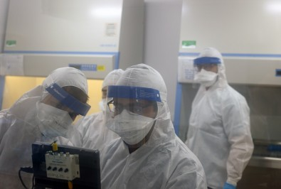Researchers join forces to combat coronavirus