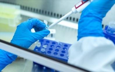 Pós-doutorado em síntese orgânica no Centro de Pesquisa em Obesidade e Comorbidades