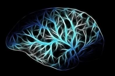Pós-doutorado em neuroimunomodulação na USP