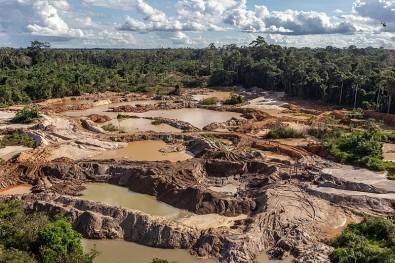 Relacionan el riesgo malárico con la demanda de productos básicos agrícolas en áreas de deforestación