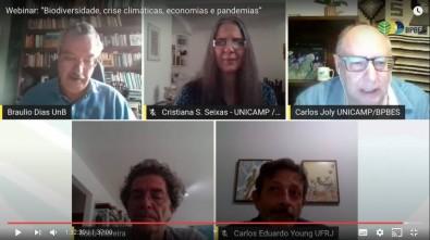 Científicos abogan por una economía ambientalista con miras a superar la crisis provocada por la pandemia