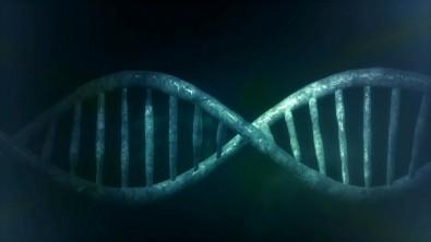Pós-doutorado em genética de populações no Instituto de Biociências da USP