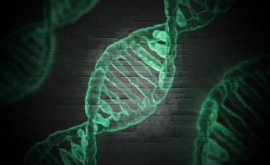 Científicos investigan ciertos factores genéticos de resistencia o susceptibilidad al COVID-19