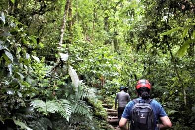 Cresce o interesse de jovens brasileiros em temas de conservação e biodiversidade, aponta estudo