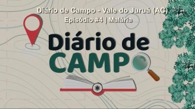 O impacto da COVID-19 no controle da malária