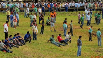 The impact of the pandemic on the Brazilian labor market