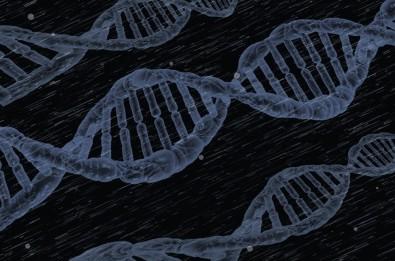 Online platform offers reference gene database for biomolecular research
