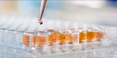 Treinamento técnico em química analítica em empresa com apoio PIPE-FAPESP