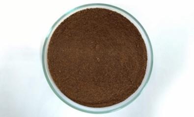 Bagaço de cana-de-açúcar nanomodificado é capaz de 'limpar' água contaminada com cobre ou crômio