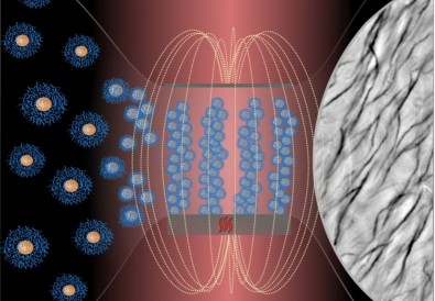 Crean cilios flexibles y biocompatibles que pueden comandarse con un imán