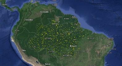 Laser mapeia clareiras na Amazônia e auxilia estudos sobre mortalidade das árvores