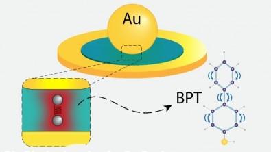Un modelo describe la interacción entre la luz y la vibración mecánica en microcavidades