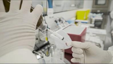 Butantan submete à Anvisa pedido de autorização para testes clínicos com soro anti-COVID