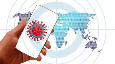 Ferramenta on-line facilita monitoramento da epidemia de COVID-19 no Brasil