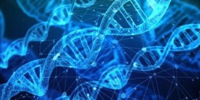 Treinamento técnico em alvos moleculares na Faculdade de Medicina de Jundiaí