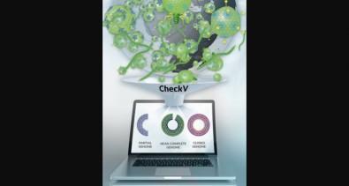 Ferramenta computacional permite avaliar e melhorar a qualidade de genomas virais