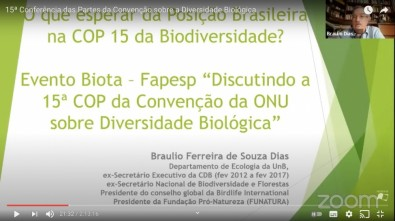 Brazil's biodiversity law needs to be adapted to the Nagoya Protocol
