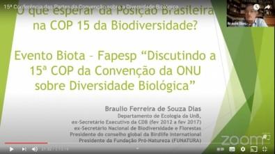 La ley de la biodiversidad de Brasil debe adecuarse al Protocolo de Nagoya