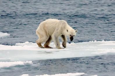 Mudança climática global: pesquisar para atuar já