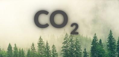 Estudo aponta os derivados de CO2 com maior potencial comercial