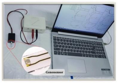 Biossensor permite detecção ultrarrápida e barata do SARS-CoV-2