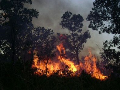 Sem manejo adequado, incêndios em áreas naturais devem se intensificar nos próximos meses, alerta estudo