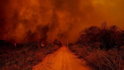 Mudanças climáticas já afetam todas as regiões do planeta, afirma IPCC