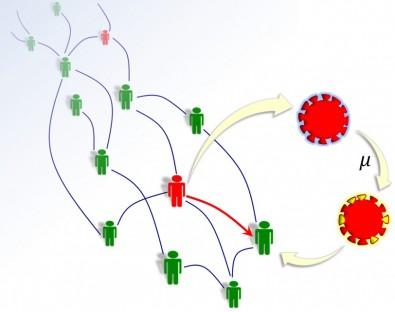 Físicos da Unicamp criam modelo para prever as mutações do SARS-CoV-2
