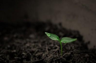 Hidrogel capaz de estocar CO2 no solo será desenvolvido e testado no Brasil