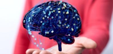 Instituto Brasileiro de Neurociência e Neurotecnologia recebe financiamento da Chan Zuckerberg Initiative