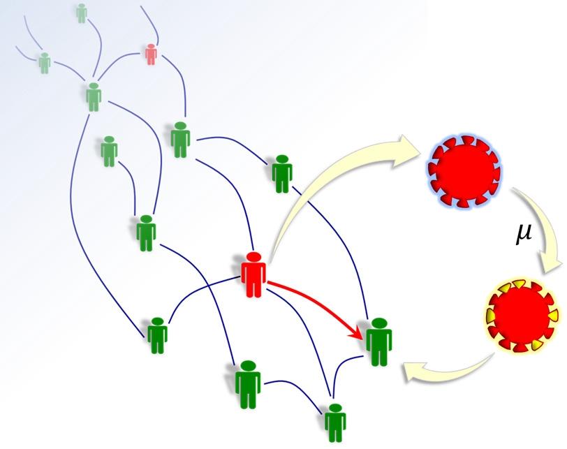 Brazilian Physicists Create a Model to Predict Mutations in SARS-CoV-2