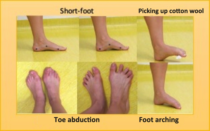 Foot training reduces risk of running-related injury by a factor of two and a half