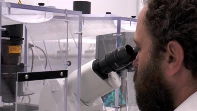 Venenos são fontes na busca por novos medicamentos