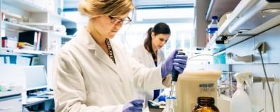 Austrian Academy of Sciences abre chamada em programa de pesquisa