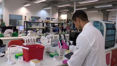 Centro de inovação aberta na Unicamp quer ampliar parcerias com farmacêuticas