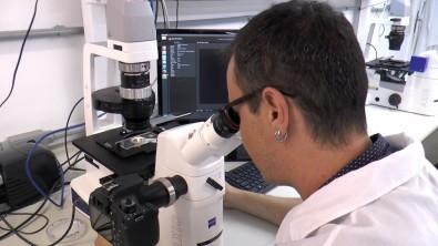 Pós-doutorado em biologia molecular na USP com bolsa da FAPESP