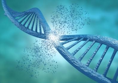 Especialistas criam comissão internacional para regulamentar edição genética em humanos